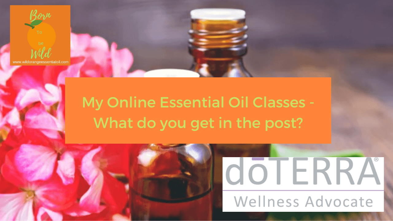 online essential oil class
